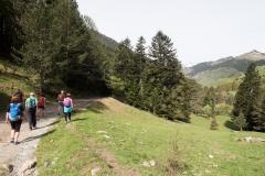 Caminada a Montgarri-9223
