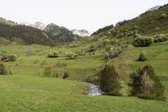 Caminada a Montgarri-9228