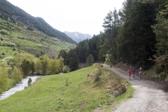 Caminada a Montgarri-9235