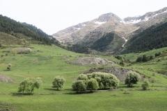 Caminada a Montgarri-9238
