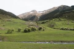 Caminada a Montgarri-9239