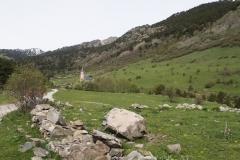 Caminada a Montgarri-9267