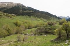 Caminada a Montgarri-9268