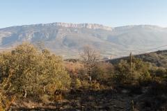 La Via Romana de la Vall d´Ager-7700