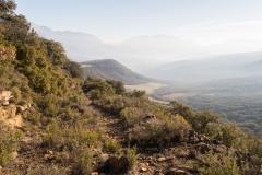 La Via Romana de la Vall d´Ager-7717