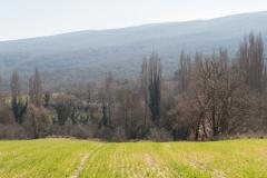 La Via Romana de la Vall d´Ager-7787