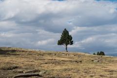Pic de Tudela-4034
