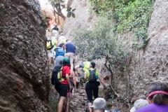 senders d'Agulles de Montserrat-9797