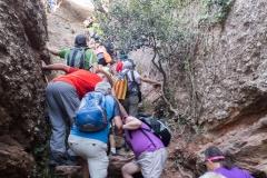 senders d'Agulles de Montserrat-9800