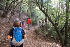 senders d'Agulles de Montserrat-9808