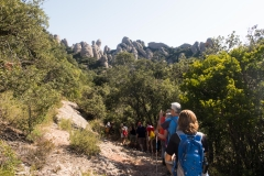 senders d'Agulles de Montserrat-9811