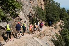senders d'Agulles de Montserrat-9821
