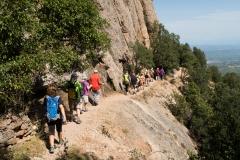 senders d'Agulles de Montserrat-9822